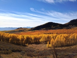 Fall colors at Guardsman Pass.