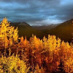 Autumn light is spectacular for photos.